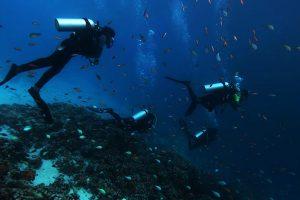 Gili Lankanfushi Chilli Travel (11)